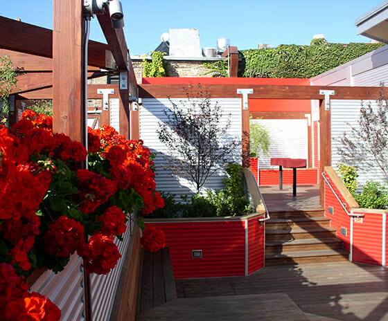 Deck Bar, Featured Image, View of deck and stairs